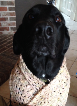 MollyModelsSquallScarf.png